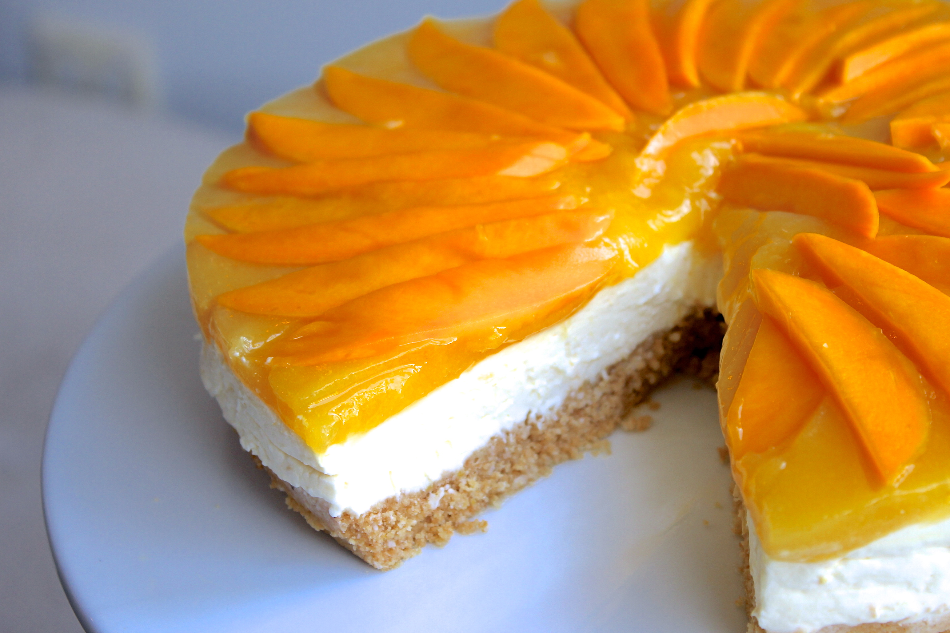 Simple indian food cooking recipes simple indian recipes simple mango cheesecake recipe forumfinder Image collections
